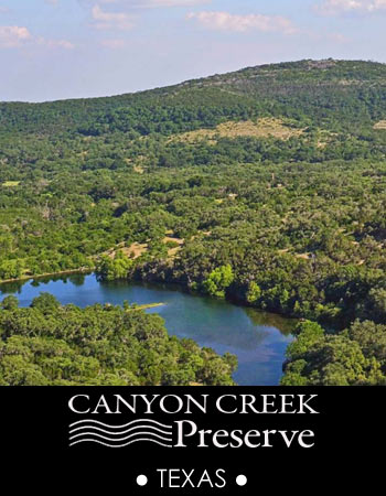 Canyon Creek Preserve