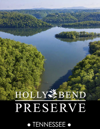 Holly Bend Preserve