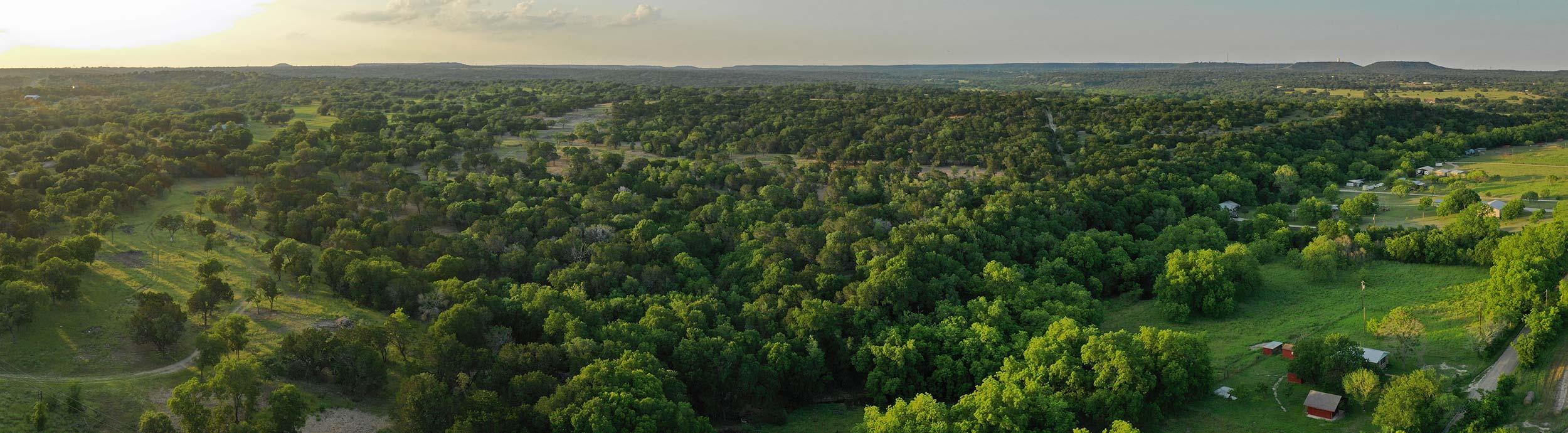 Texas Land for Sale - National Land Partners - Arrowhead