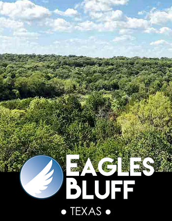 Eagles Bluff