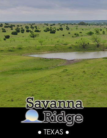 The Ranches at Savanna Ridge