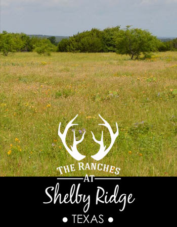 The Ranches at Shelby Ridge