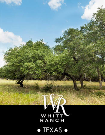 Whitt Ranch