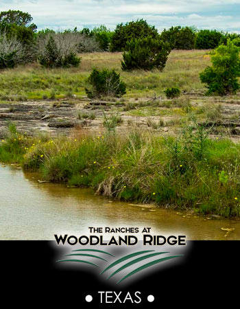 The Ranches at Woodland Ridge